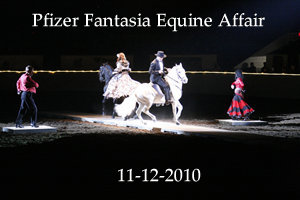 2010-11-12 Pfizer Fantasia Equine Affaire
